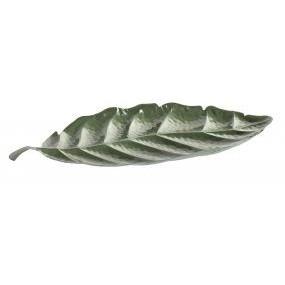 alquiler bandeja hoja metal ficus verde